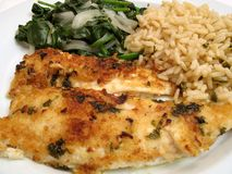 Flounder Scampi Dinner. Photo of broiled Flounder Scampi topped with breadcrumbs and a garlic butter sauce. Spinach and rice are served at the side stock images