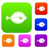 Flounder set color collection. Flounder set icon color in flat style isolated on white. Collection sings vector illustration Stock Photography