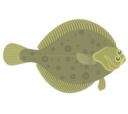 Flounder. Vector illustration (EPS 10&#x29 Royalty Free Stock Image