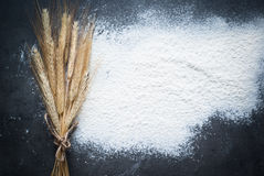 Flour background Stock Image