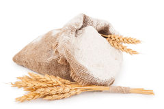 Flour in burlap bag with wheat ears Stock Images