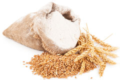 Flour in burlap bag with wheat ears Royalty Free Stock Photo