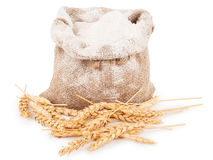 Flour in burlap bag with wheat ears Royalty Free Stock Images
