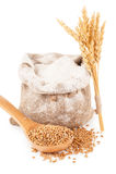 Flour in burlap bag with wheat grain Stock Image