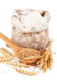 Flour in burlap bag with wheat grain Stock Photo
