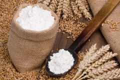 Flour and cereal. Flour in small burlap sack Stock Image