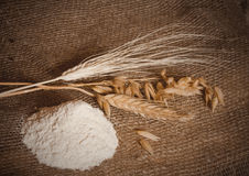Flour and cereals Royalty Free Stock Photography