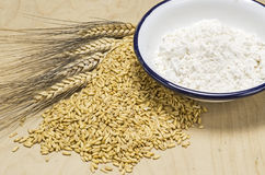 Flour and grain Royalty Free Stock Images
