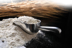 Flour and grain Stock Photography