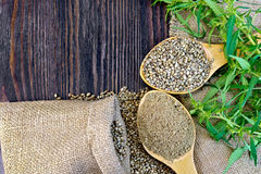 Flour hemp with grain in wooden spoons on board royalty free stock photography