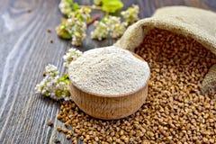 Flour o trigo mourisco na bacia com cereais e flor a bordo Fotografia de Stock