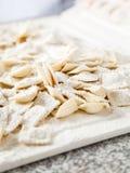 Flour Sprinkled On Raw Ravioli Pasta Royalty Free Stock Photo