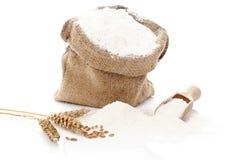 Flour still life. Stock Photography