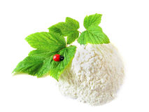 Flour, twig and ladybug on white background Royalty Free Stock Photo