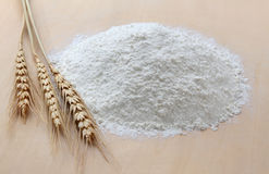 Flour and wheat royalty free stock photo