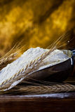 Flour and wheat Royalty Free Stock Photography