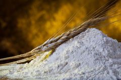 Flour and wheat Royalty Free Stock Image