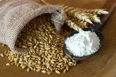 Flour and wheat grain. On wooden background Royalty Free Stock Photos