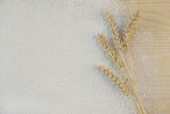Flour. White fine flour and wheat ears Stock Photo
