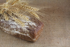 Floured bread with  wheat Royalty Free Stock Images