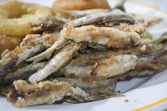Floured and fried anchovies Royalty Free Stock Photography