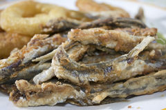 Floured and fried anchovies Stock Image