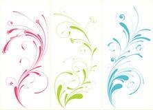 Free Flourish Stock Image - 10828001