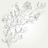 Flourish background vector illustration