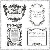 Vintage decorative frames set. Flourish border corner and frame collection. Decorative elements for design invitations, frames, menus Royalty Free Stock Images