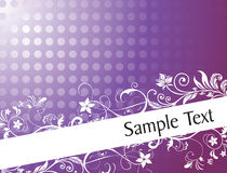 Flourish and curve elements for sample text Stock Photo