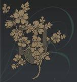 Flourish del elemento del diseño Imagen de archivo