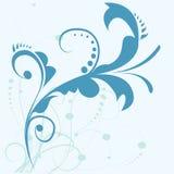 Flourish design. Element, illustration background Stock Photography