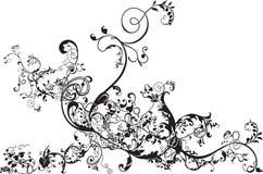 Flourish floral ilustração stock