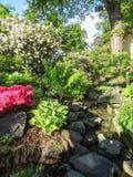 Flourish garden scenery. Sunny flourish garden scenery at summer time Royalty Free Stock Images