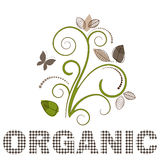 Flourish organico Fotografie Stock