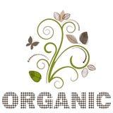 Flourish organique Photos stock
