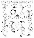 Flourish ornament Royalty Free Stock Photo