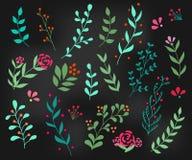 Flourish ornate decoration element Royalty Free Stock Photo
