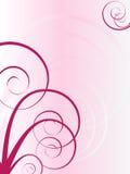 Flourish spiral background. Flourish spiral vector pink background Royalty Free Stock Photography