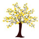 Flourish tree Stock Image