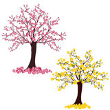 Flourish trees Royalty Free Stock Image