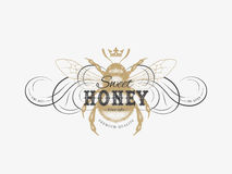 Flourish vintage label. Vintage label with ink hand drawn sketch of bumblebee and flourish calligraphic elements. Vector illustration stock illustration