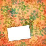 Flourished frame. Square flourished frame on orange leaves background Royalty Free Stock Photo