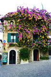Flourished house in Sirmione, Garda Lake, Italy. Beautiful flourished house in Sirmione, Garda Lake, Italy Royalty Free Stock Photos