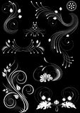 Flourishes decorative details on black background Stock Photos