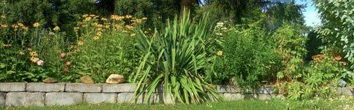 Flourishing flowerbed at summer Royalty Free Stock Image