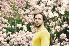 Flourishing and growth. Spring season concept. New life and optimism. Caucasian guy with beard in yellow sweater on floral background. Man posing in park with royalty free stock photos