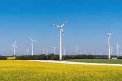Flourishing rapeseed field with wind turbines. In the back seen in Germany stock image