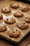 Flourless choklad Chip Cookies On Baking Sheet för jordnötsmör Royaltyfri Foto