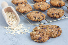 Flourless gluten free peanut butter, oatmeal and chocolate chips cookie on cooling rack, horizontal Stock Photos